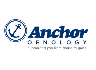 Anchor Logo